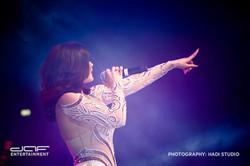 daf BAMA Performance 2015 (20)