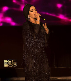 daf BAMA Performance 2017 (59)