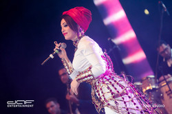 daf BAMA Performance 2015 (13)