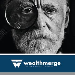 WealthMerge Booklet