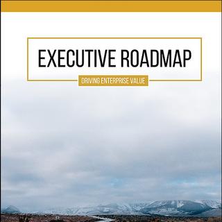 Executive Roadmap Notebook