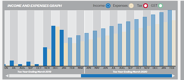10.1 Income & Expenses Graph 1.png