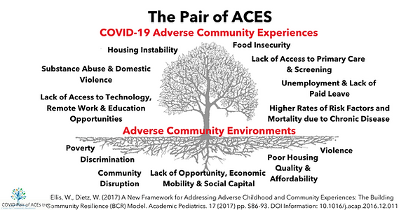 The Pair of ACEs -Covid-19.png