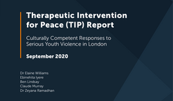 Therapeutic Intervention for Peace (TIP) Report