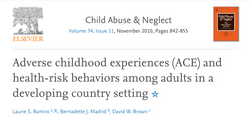 Adverse childhood experiences and health-risk behaviors among adults in a developing country setting