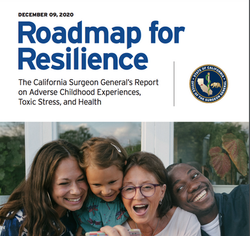 Roadmap for Resilience