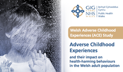 ACEs and their impact on health-harming behaviours in the Welsh adult population