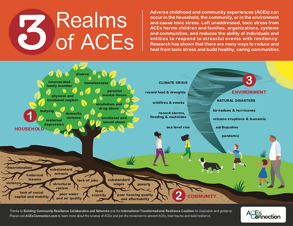 3 Realms of ACEs_Oct20.png