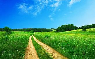footpath-691021_1280.jpg