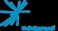 Community Foundaion of White County - Logo