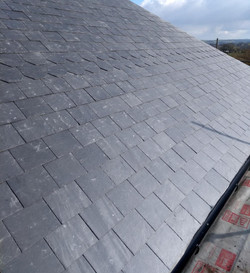 decorative roofing S S Roofing specialists