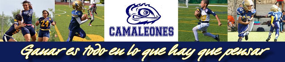 HEAD Camaleones.jpg
