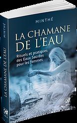 LaChamaneDeLeau-PRO3D.png