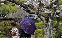 HIROSHIMA - SHUKKEI-EN GARDEN.jpg