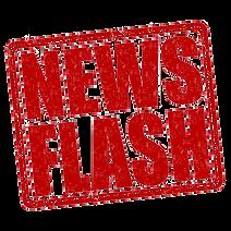 News Flash2.png