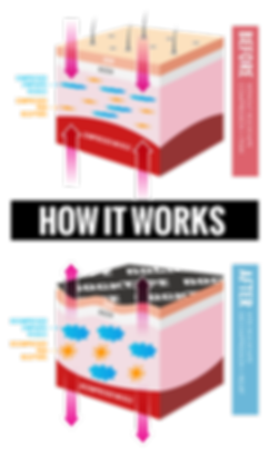 2017-01-How-It-Works-v2.png