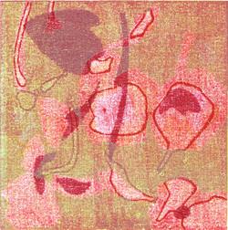 Nr.6   flowers