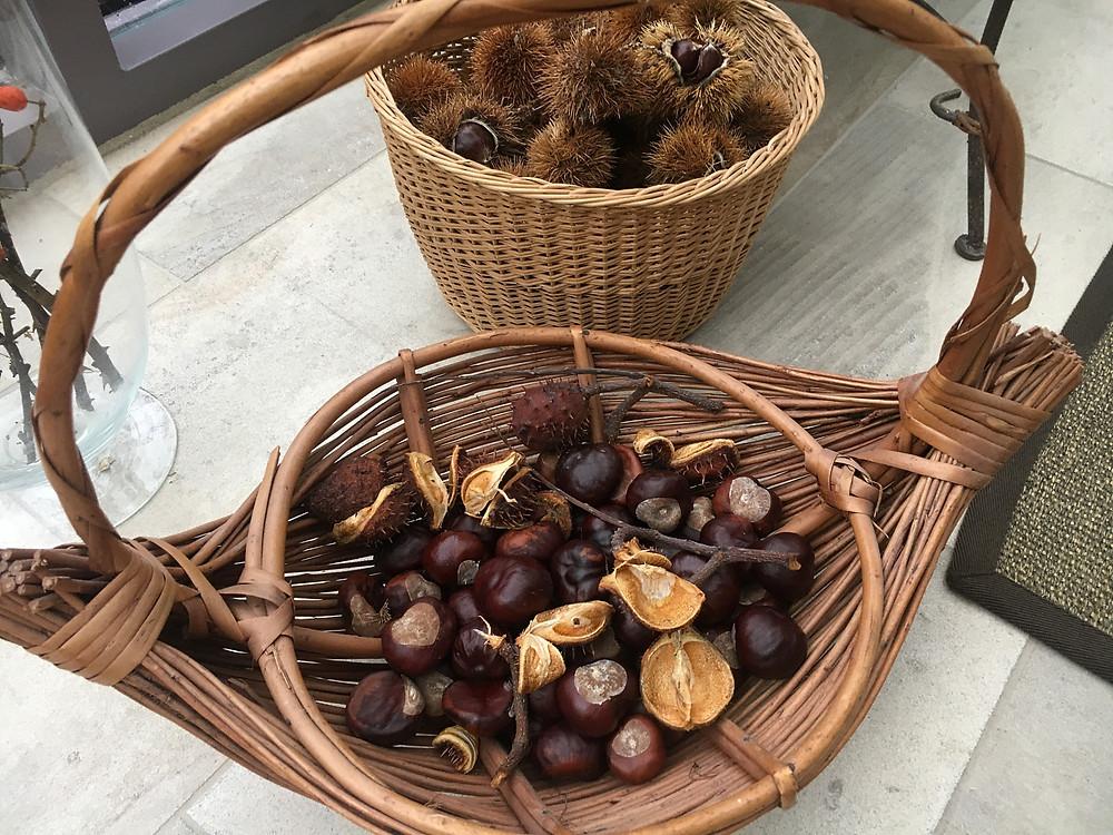 zwei Körbe gefüllt mit Maroni und Kastanien, teils in Schale