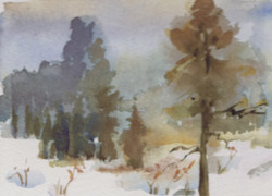 148 Winter