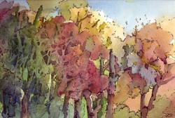 1523  Herbstwald