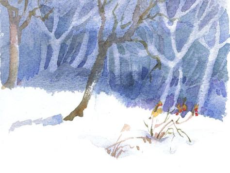 Homeschooling - Winter und Schnee Teil   2