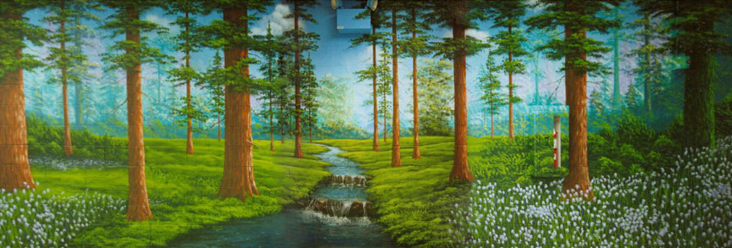 MURALS, MURALS with animals, MURALS with people, Graphics / Logos / Mascots, Landscapes, Underwater, Repair & Touch-up, Painting a MURAL,