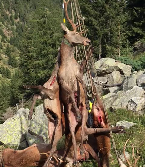 in Graubünden