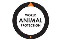 Protection Mondiale des animaux