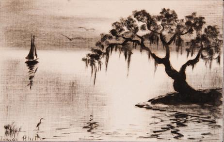 Oak Tree and Sailboat