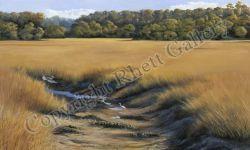 Broomfield Marsh