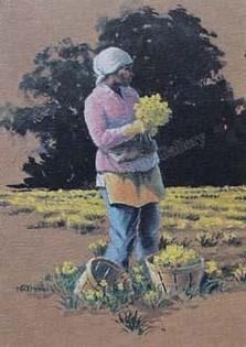 Daffodil Picker (Pink)