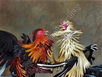 Gamecocks