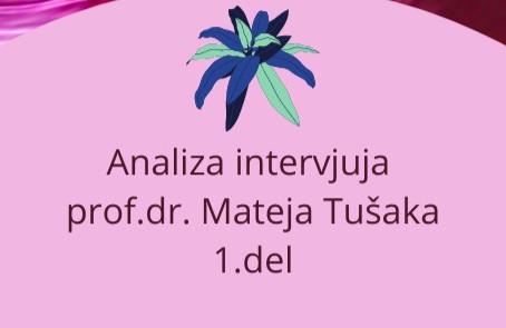 NAPAČNE INTERPRETACIJA IN IMPLEMENTACIJE – Analiza intervjuja prof.dr. Mateja Tušaka, 1. del