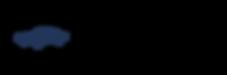 VEHGLASS-logo (2).png