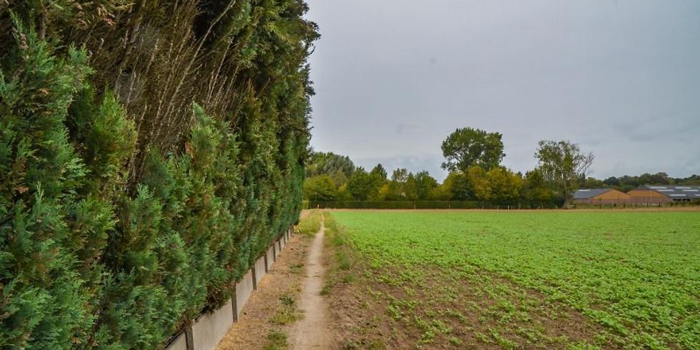 Ach Ja wandelt in Nieuwenrode