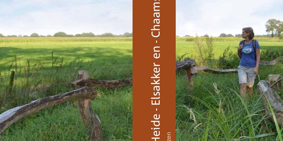 Wandeling aan de Chaamse en Strijbeekse Beek