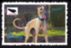 Eneritz_Postkarte.png