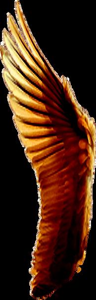 fluegel-rot-susi.png