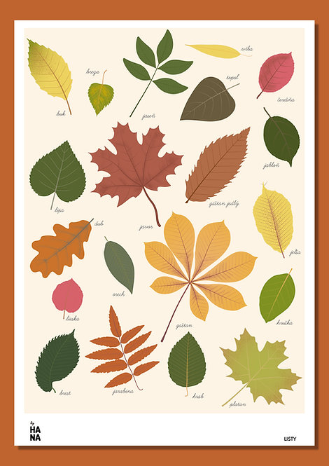 Listy poster / Leaves poster