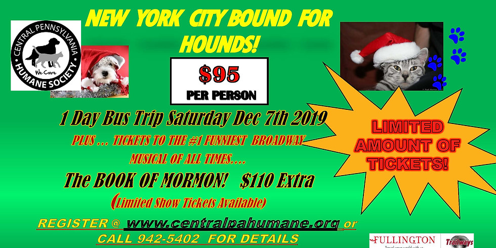 NEW YORK CITY BOUND FOR HOUNDS