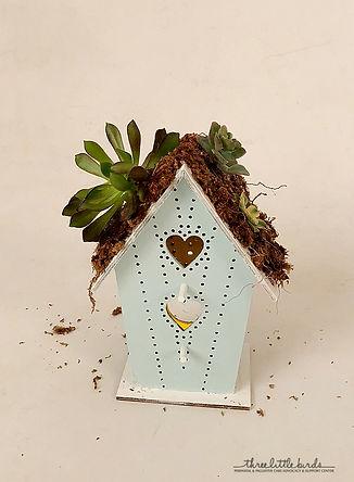 birdhouse craft.jpg