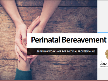 Pre-Registration for Perinatal Bereavement Training Workshop for Medical/Birth Professionals is open