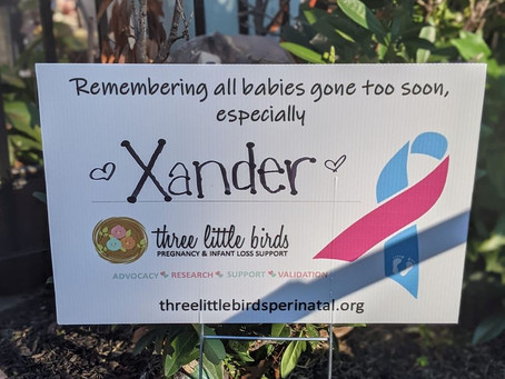 October is Pregnancy & Infant Loss Awareness Month - Join the nest for inspiration and support!