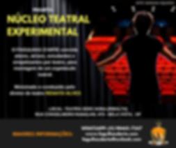 NÚCLEO_TEATRAL_EXPERIMENTAL.png