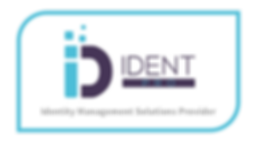 IDENT Pro Logo Title.png