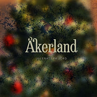 AAkerland_Julenatt_paa_jord72.jpg