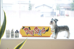 DOGSTYLE|看板|福岡ペットサロン