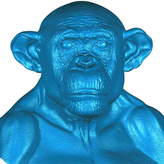 Scan handmodellierte Maske