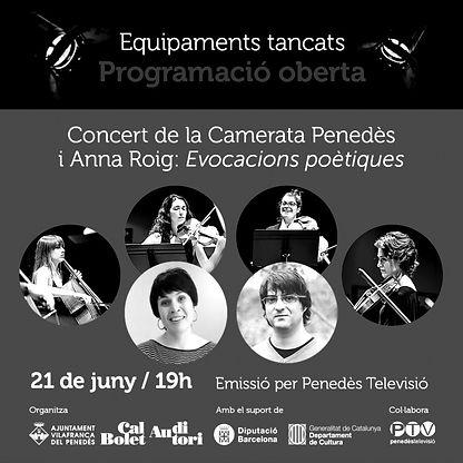 Fotografia del concert de la Camerata Penedès en streaming amb l'Anna Roig a l'auditori de Vilafranca del Penedès