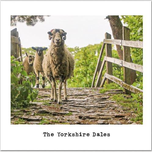 Yorkshire bridge greeting card